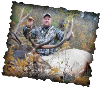 Nothing better than Elk harvested with guides from outfitter Idaho Whitetail Guides